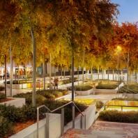 Sydney Metro North West Art Planning